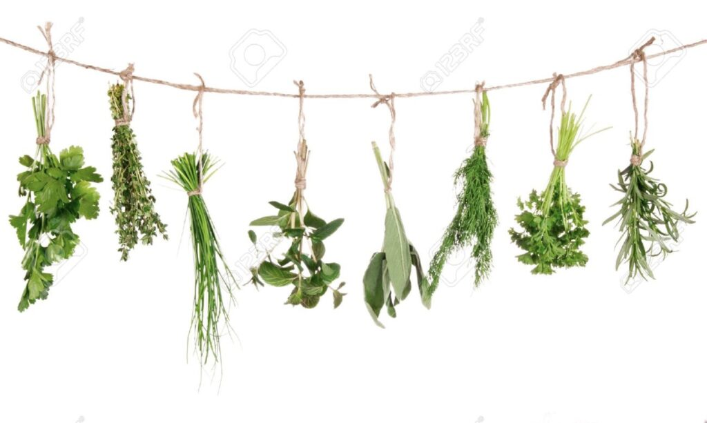 Herbs and Spices that Make You Feel Better